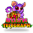slot bush telegraph