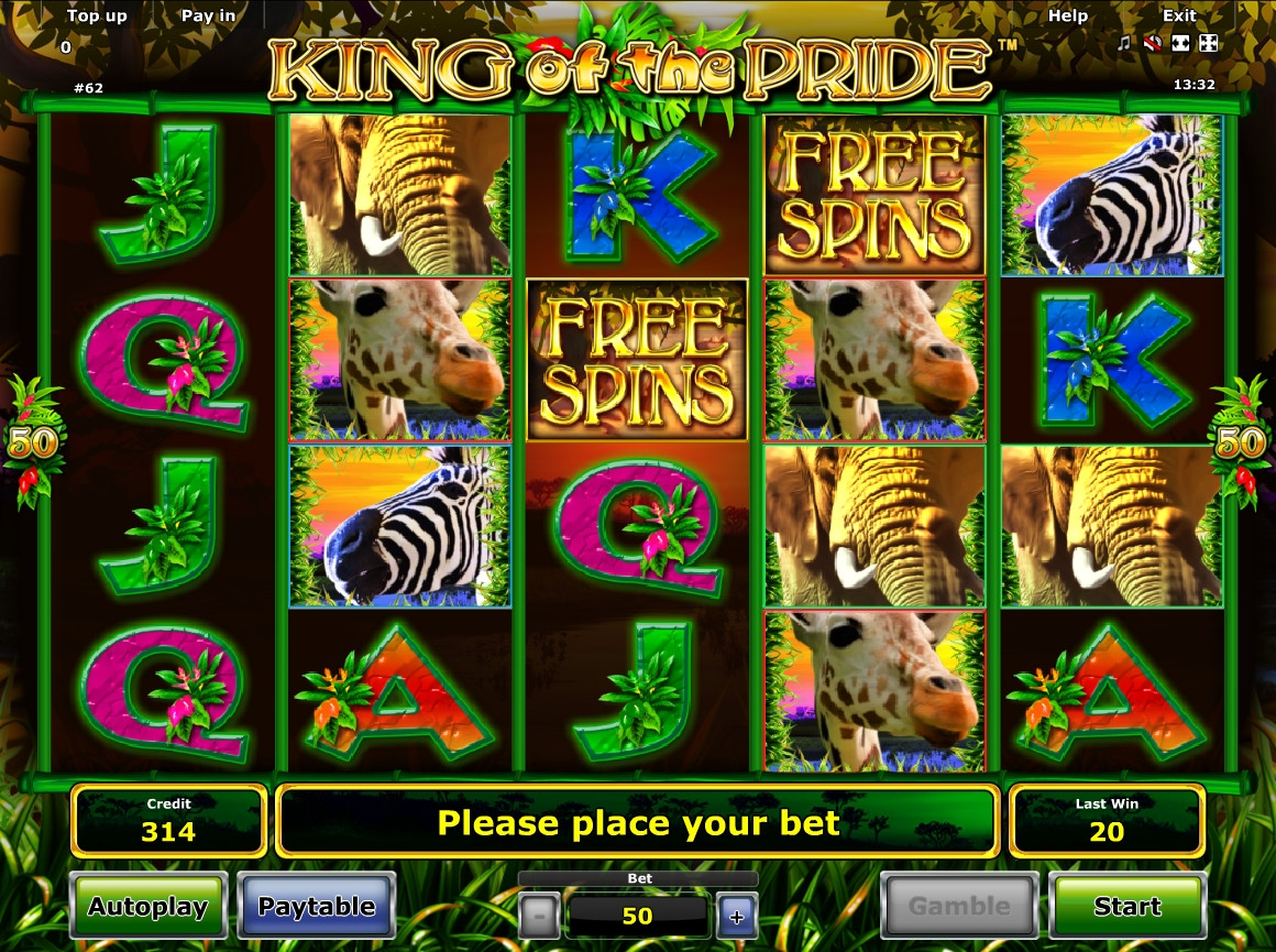 gioco king of the pride