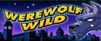 slot wherewolf wild